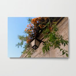 Lamp and Colorful Flowers I Metal Print