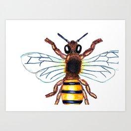 Large HoneyBee Art Print