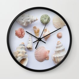 Shell collection Wall Clock