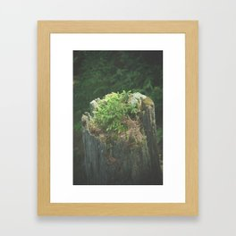 From my Father's Roots Framed Art Print