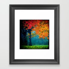 Nature's Embellishment Framed Art Print