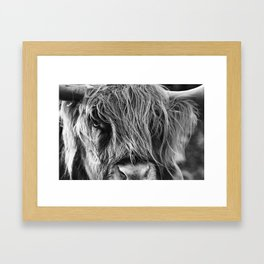 Highland cow print Framed Art Print