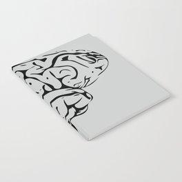 Braaains Notebook