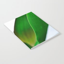 Orchid leaves Notebook