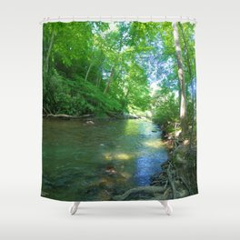 The Path of the Creek  Shower Curtain