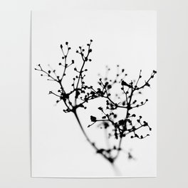 Abstract of Nature Poster
