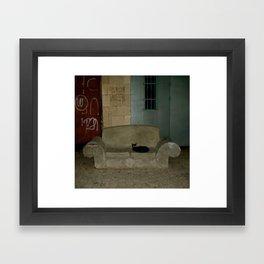 Black Cat On Love Seat, Old Jaffa,Israel Framed Art Print