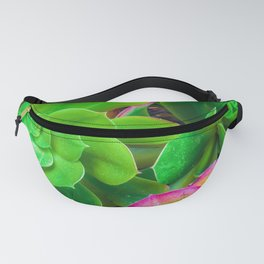 closeup green and pink succulent plant garden Fanny Pack