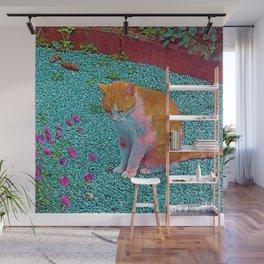 Popular Animals - Cat Wall Mural