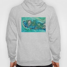 Ice Scours the North Caspian Sea Hoody