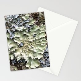 Nature's Fence Flowers Stationery Cards