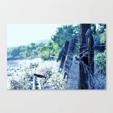 Fence Cool Blue Canvas Print