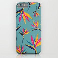 Bird of Paradise #2 iPhone 6s Slim Case