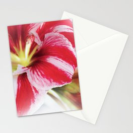 Ameralis Stationery Cards