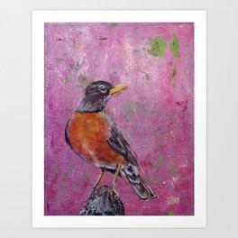American Robin #5 Art Print