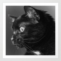 Pensive Kitty Art Print
