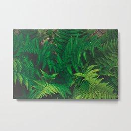 Leaf jungle Metal Print