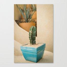 Cabo Cactus V Canvas Print