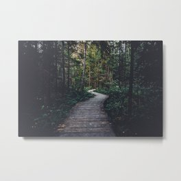 Path Unknown Metal Print