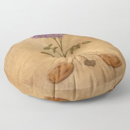 Anatomy of a Potato Plant Floor Pillow