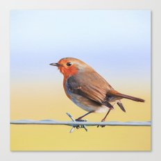 The Red Robin Canvas Print