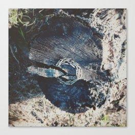 Pine branch circle Canvas Print
