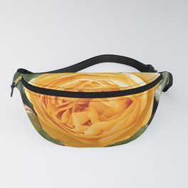 Warm Yellow Rose by Reay of Light Photography Fanny Pack