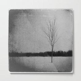 timeless. Metal Print