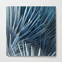 Washingtonia in blue Metal Print