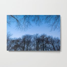 Typical autumnal postcard from the woods, with a scary atmosphere Metal Print