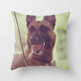 Malinios Beauty dog picture Throw Pillow