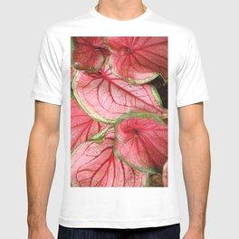 Caladium T-shirt