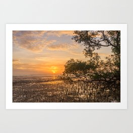 Dawn over the mudflats and mangrove tree, Phang Nga Bay, Phuket, Thailand Art Print