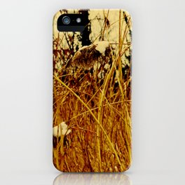 Snow covered pond reeds iPhone Case