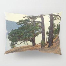 LOOKING WEST ALONG BURROWS PASS Pillow Sham