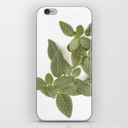 Nerve Plant iPhone Skin