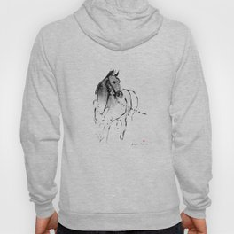 Horse (Lunging) Hoody
