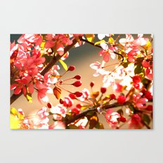 Bright Shining As The Sun Canvas Print