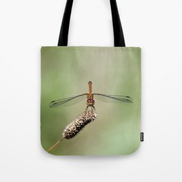 Autumn Meadowhawk Dragonfly Tote Bag