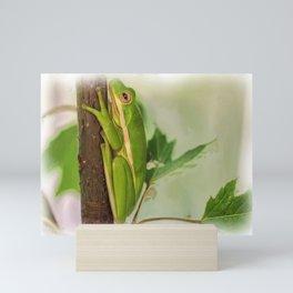 Painted Green Tree Frog Mini Art Print