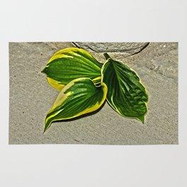 Gilded Leaves Rug