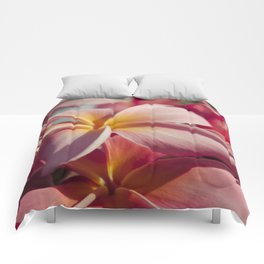Pua Melia Ke Aloha Maui Hikina Comforters