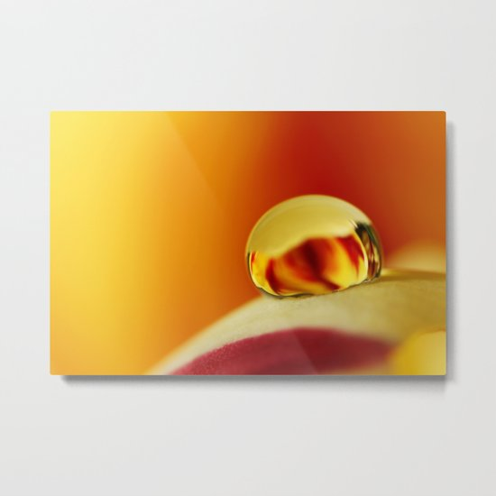 Fiery Tulip Drop Metal Print