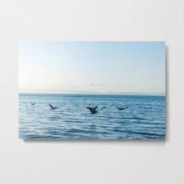 Flying Flock Metal Print