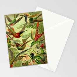 HUMMINGBIRD COLLAGE- Ernst Haeckel Stationery Cards