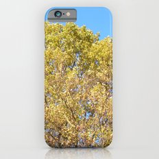 sunny day iPhone 6s Slim Case