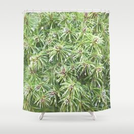 Spring Rain on Spruce Needles Shower Curtain