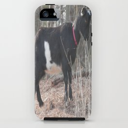 Oreo The Kid Goat iPhone Case