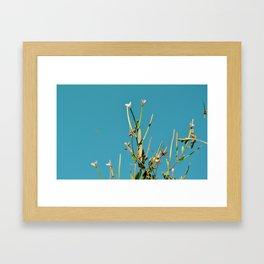 A Summer Sky Framed Art Print