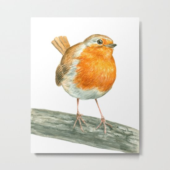 Robin bird watercolor art Metal Print